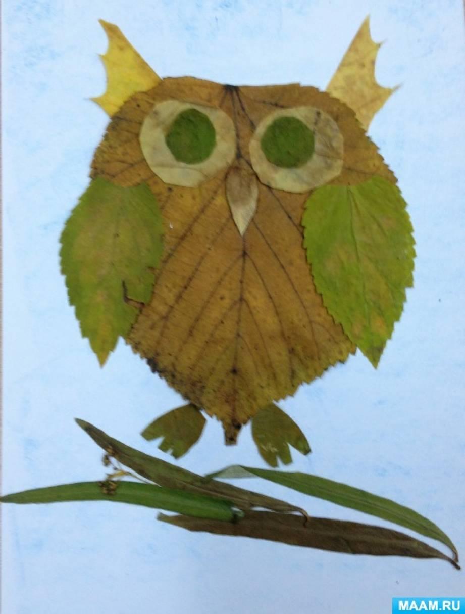 рисунки из листьев сова началова ушла жизни