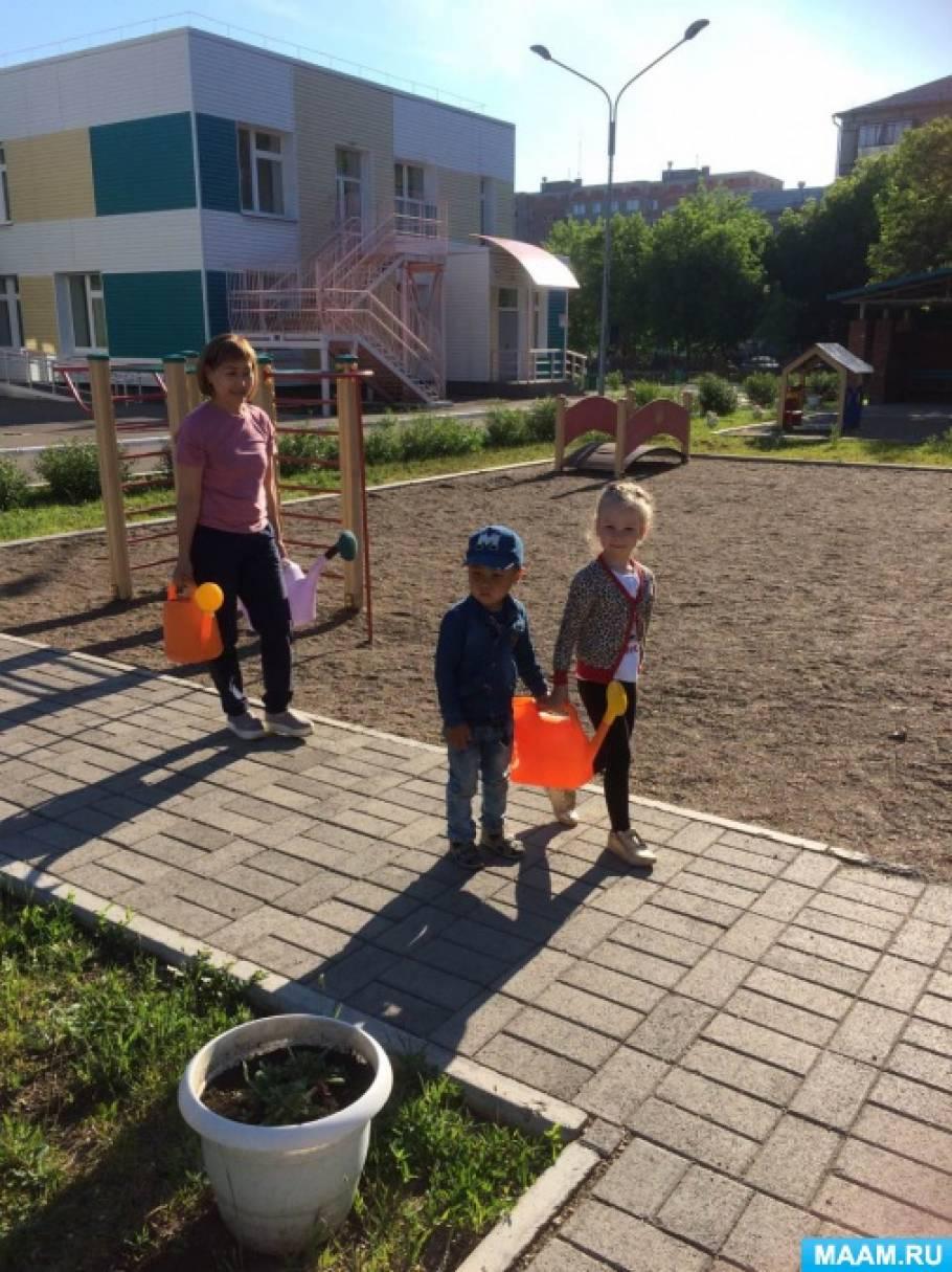 Проект «Украсим участок нашего сада»
