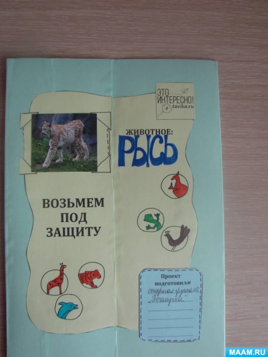 Лэпбук для детей старшей группы «Животные Красной книги Самарской области. Рысь»
