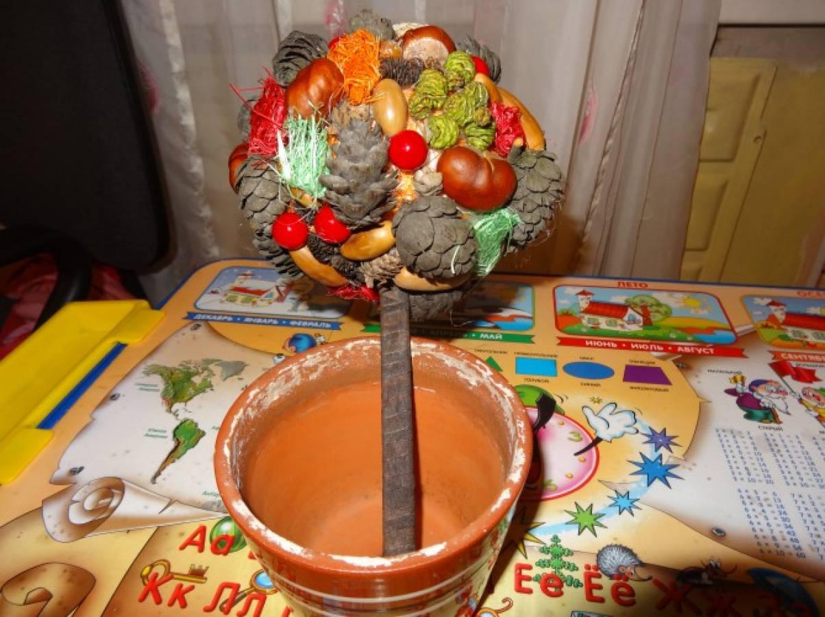 Осенний топиарий своими руками из природного материала с ребенком