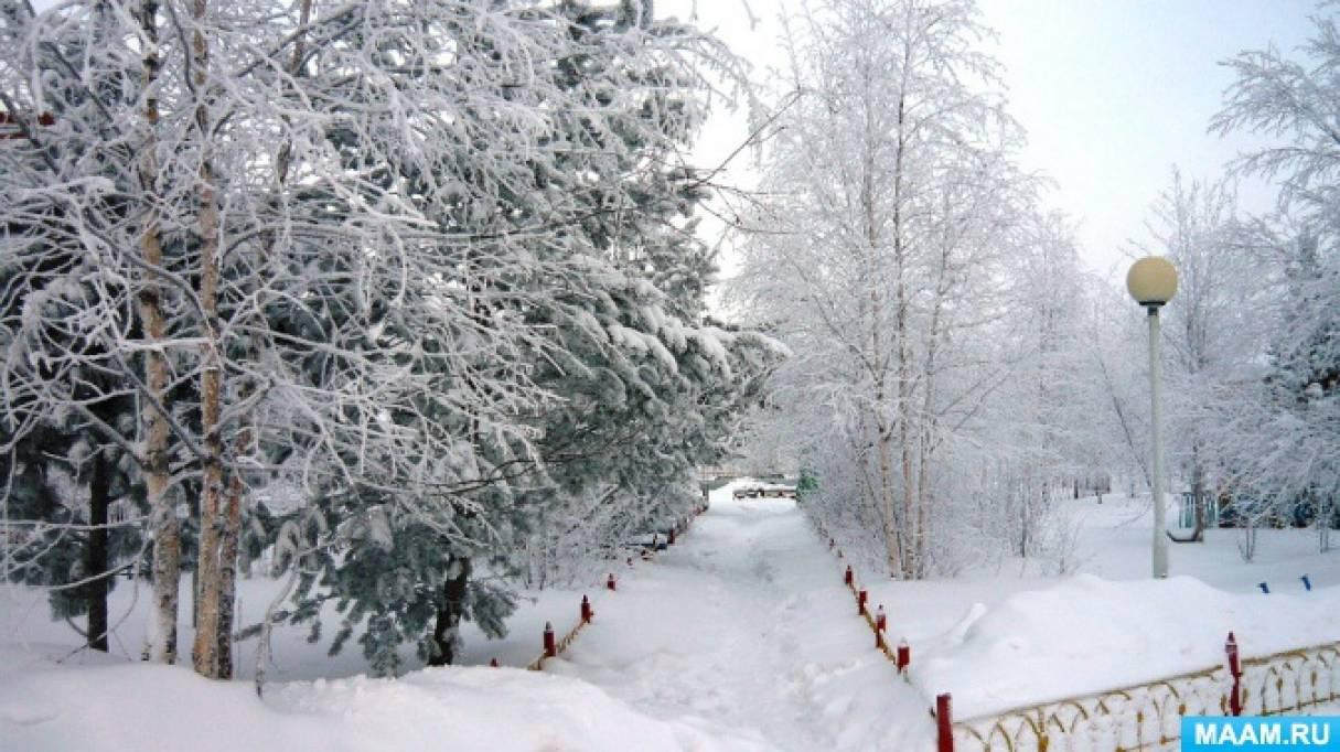 «Зимушка— зима. Деревья». Календарно-тематическое планирование ОП в средней группе по программе...