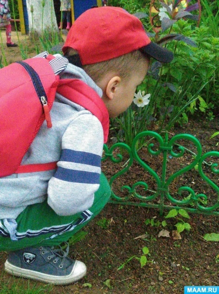 Проект «Радость режима дня» в группе раннего возраста