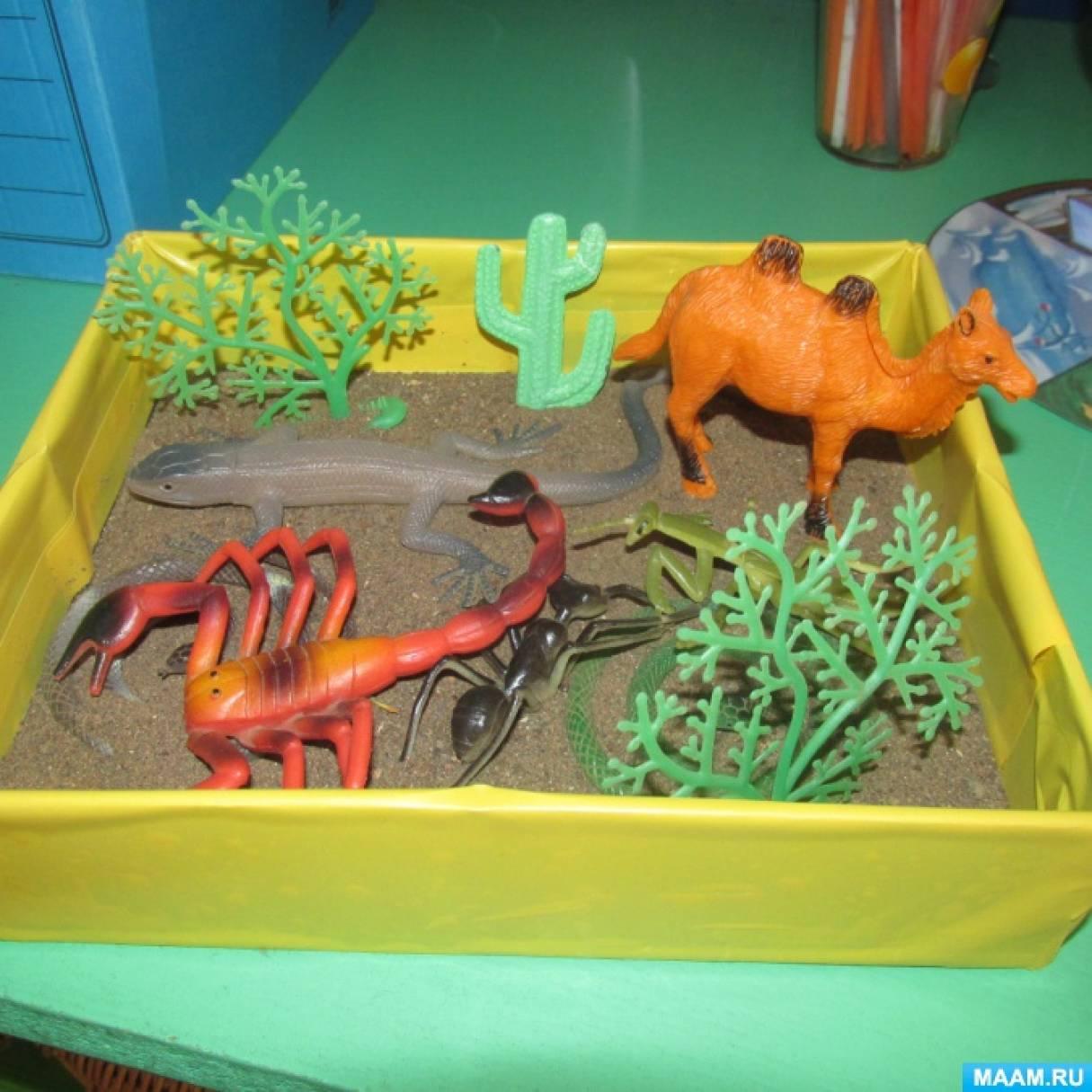 Макеты природных зон для детского сада своими руками 15
