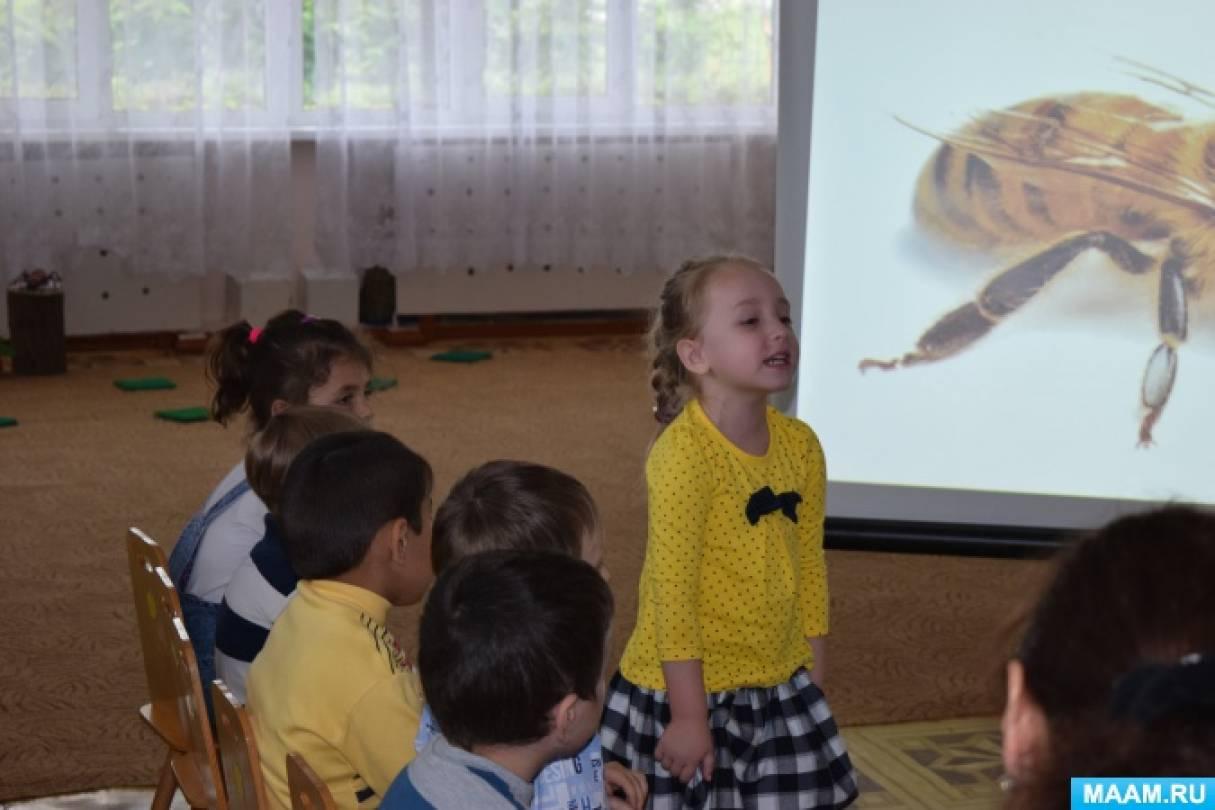 рассказ про муравья первый класс