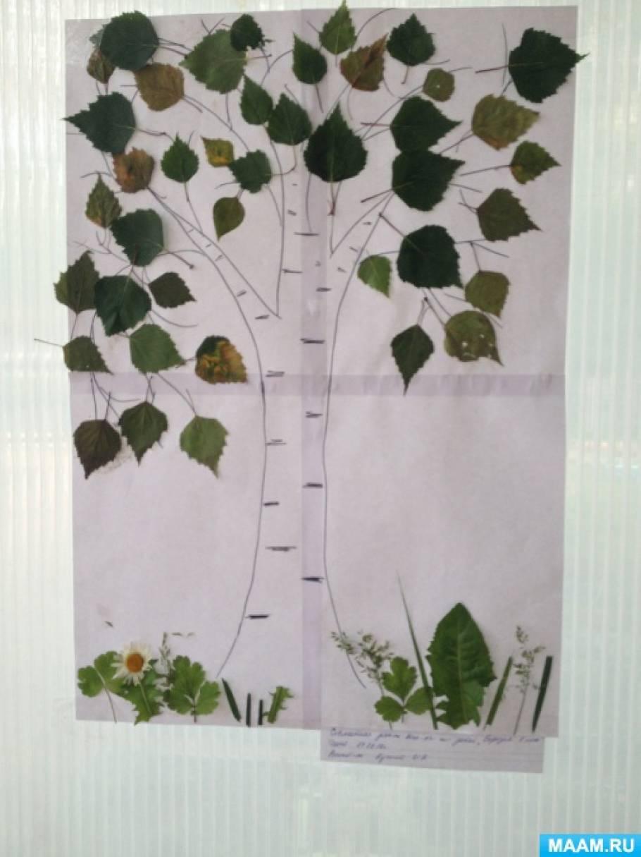 Коллективная работа детей средней группы «Берёзка».