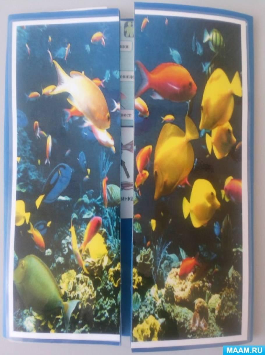 Лэпбук «Рыбы: какие они»
