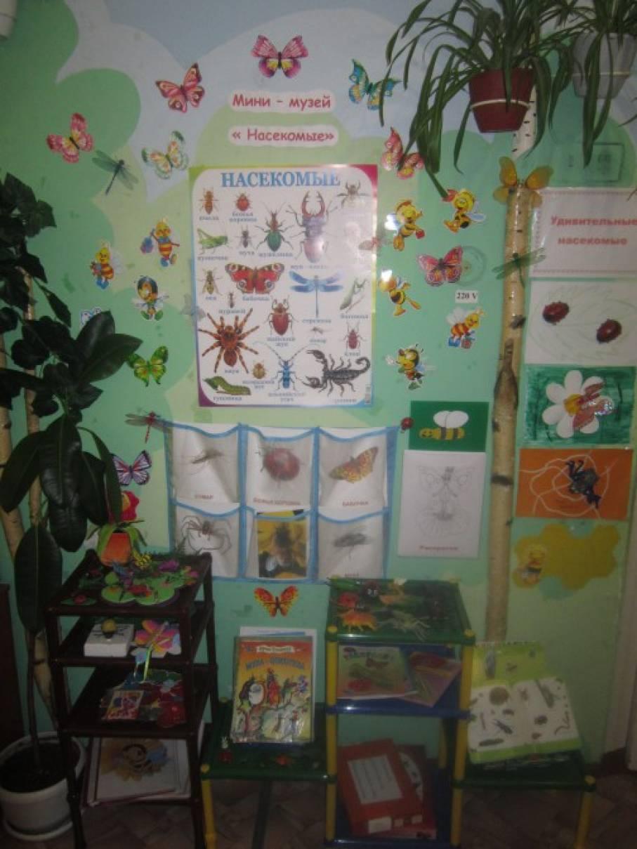 Мини-музей «Насекомые»