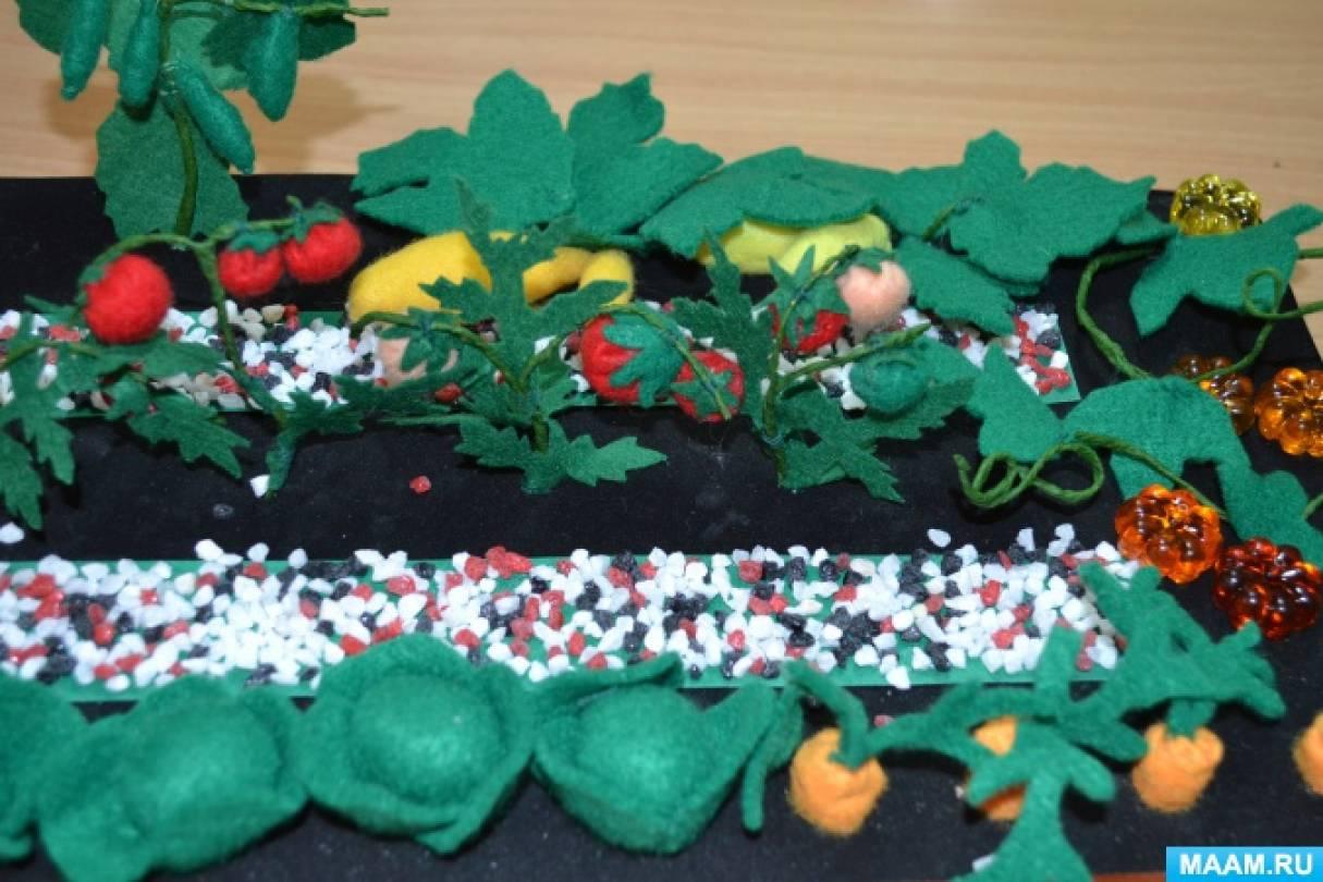 Макет «Огород» для средней группы детского сада