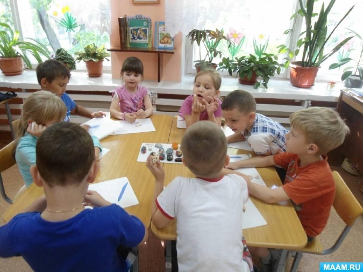 Фотоотчет о занятии по лепке с натуры «Чудесные раковины» для детей старшего дошкольного возраста