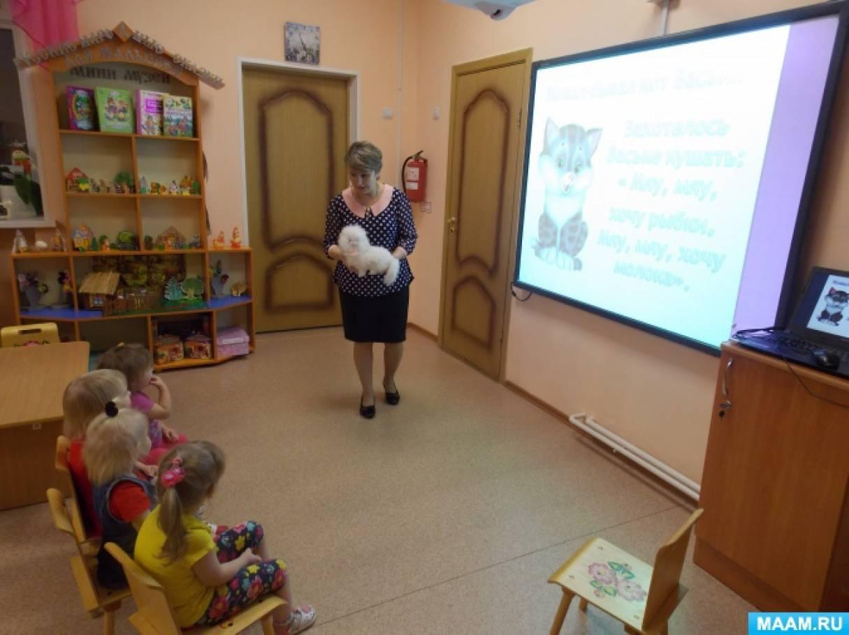 Конспект образовательной деятельности в первой младшей группе «Кот Васька»