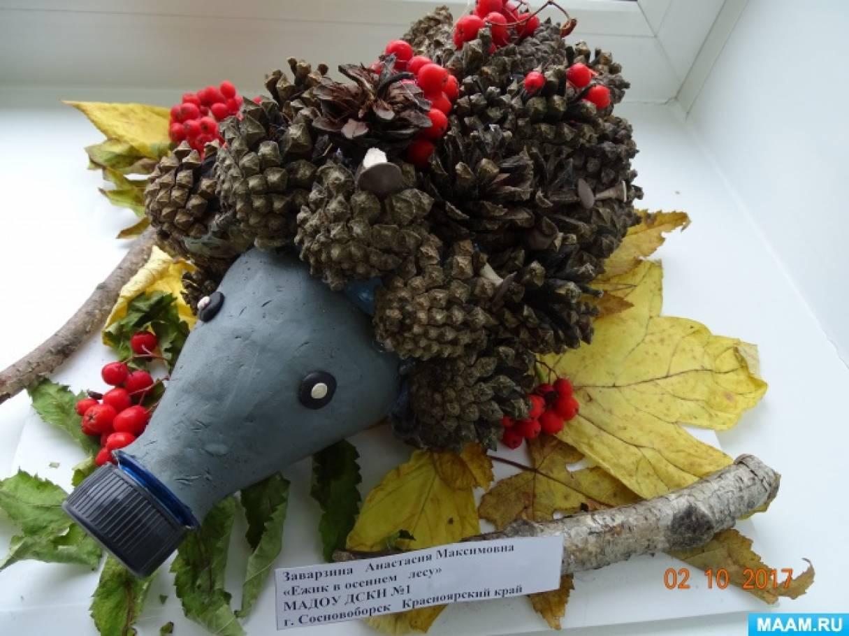 Фотоотчет о выставке поделок из природного материала «Вот так листик, вот так шишка!»