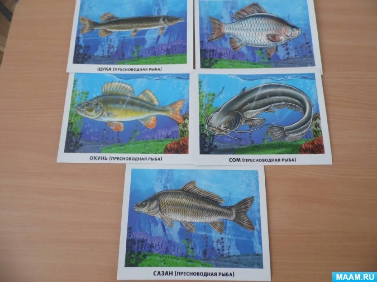 Картинки для детей по теме наша родина россия