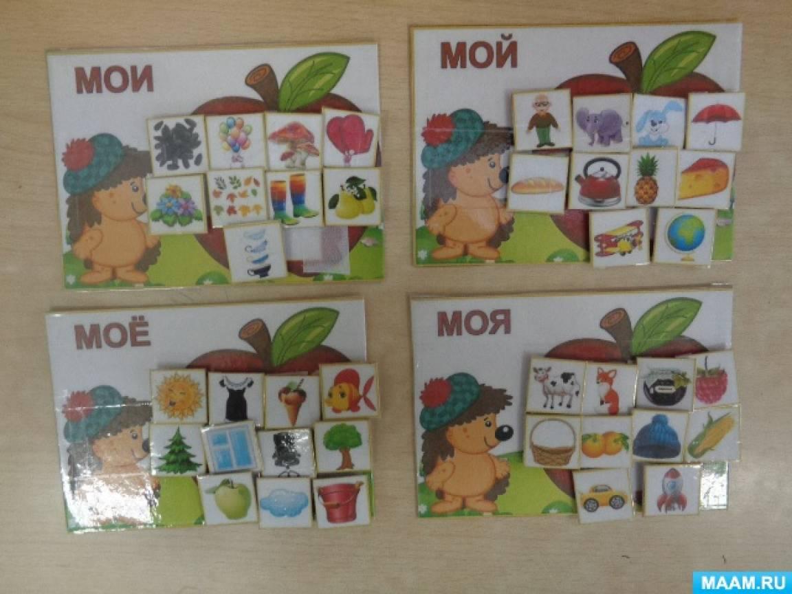 Дидактическая игра по развитию речи «Моя, мой, мои, моё» в старшей группе