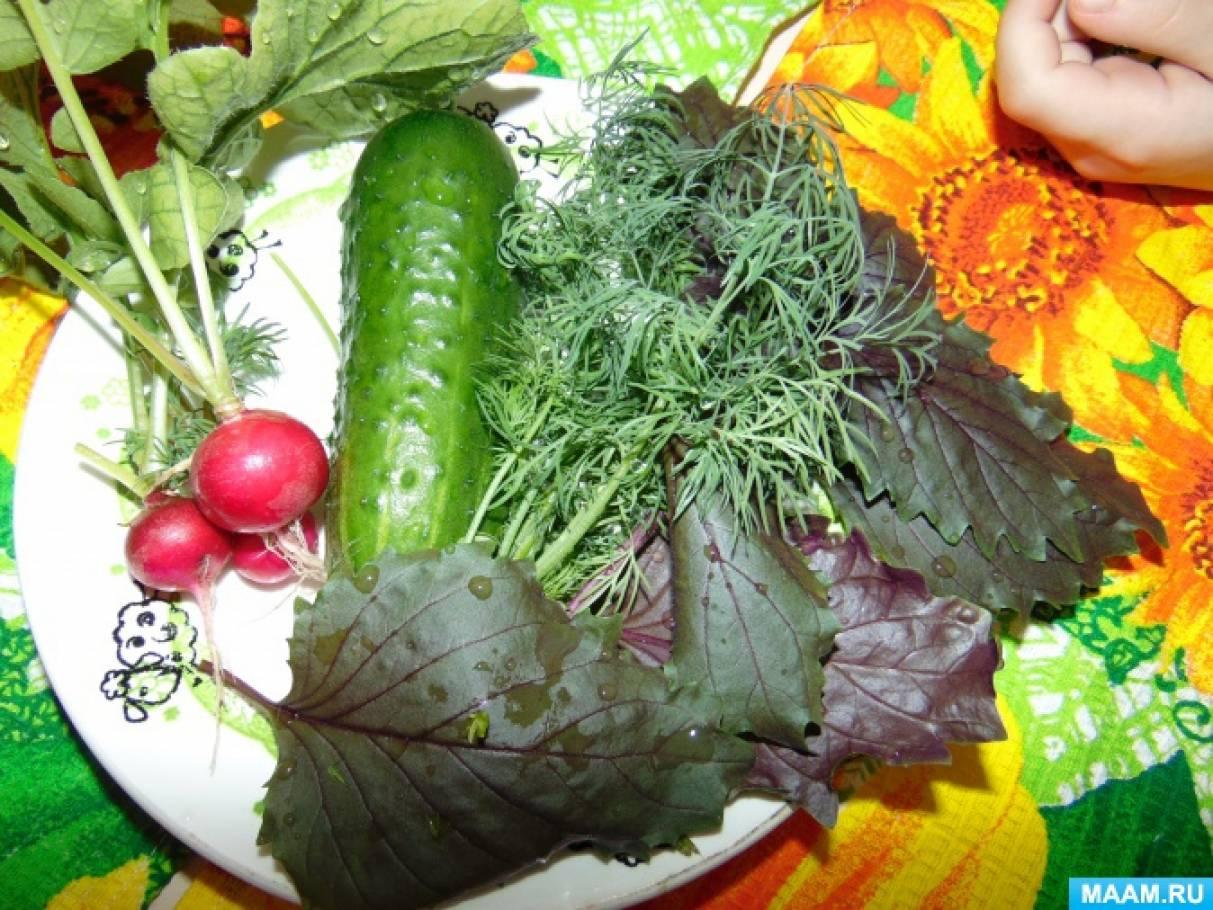 Фотоотчет «Во саду ли, в огороде… Урожай!»