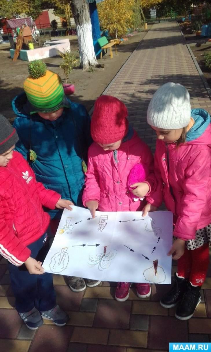 Конспект прогулки в подготовительной группе в форме квест-игры «Корона для Осени»