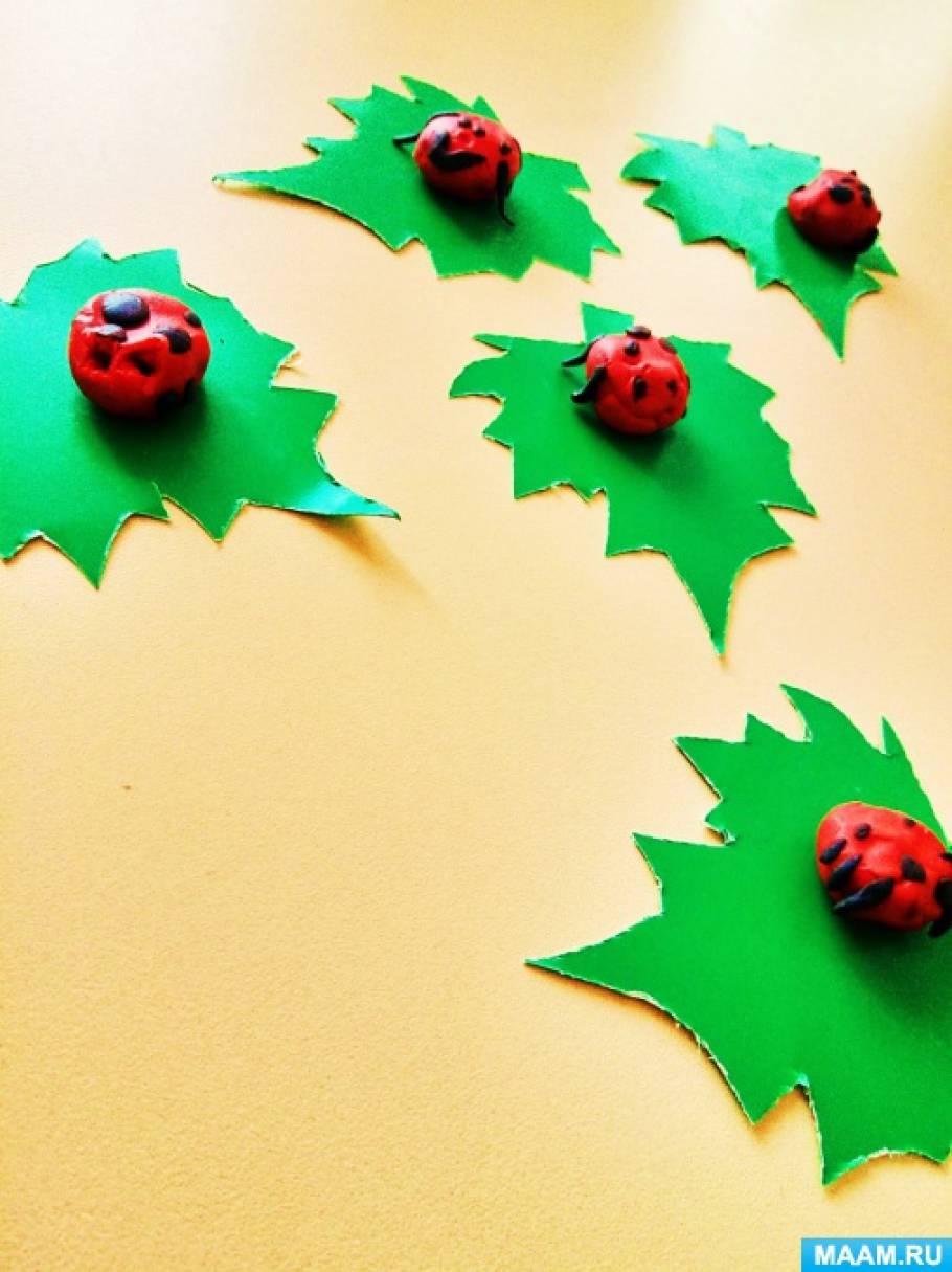 План конспект занятия по лепке «Божья коровка» (насекомые летом)