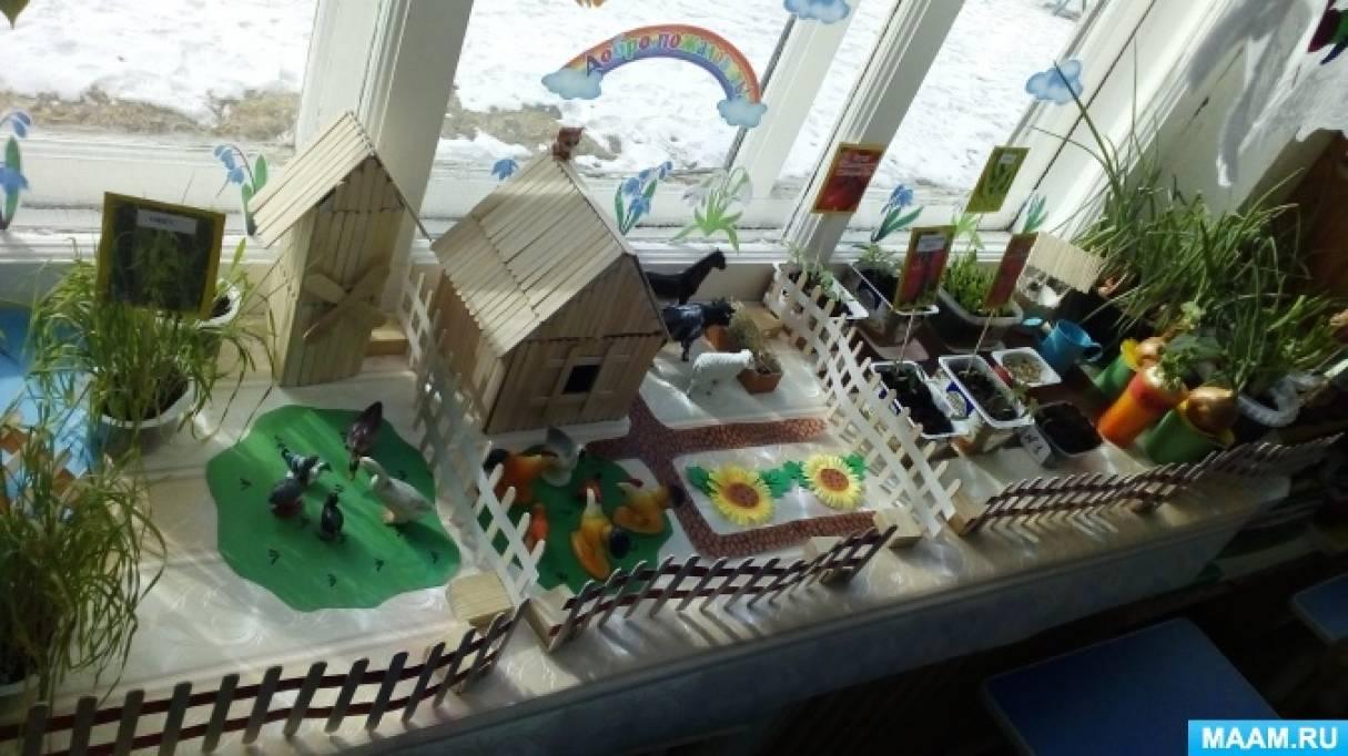Отчёт о смотре-конкурсе «Мини-огород на окне»
