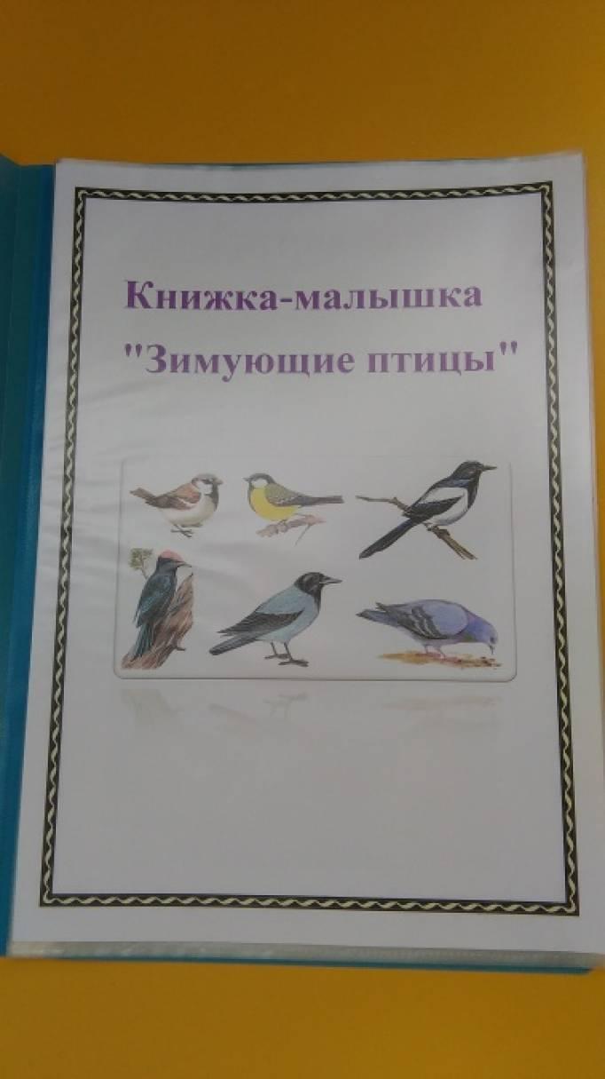 Книжка своими руками зимующие птицы