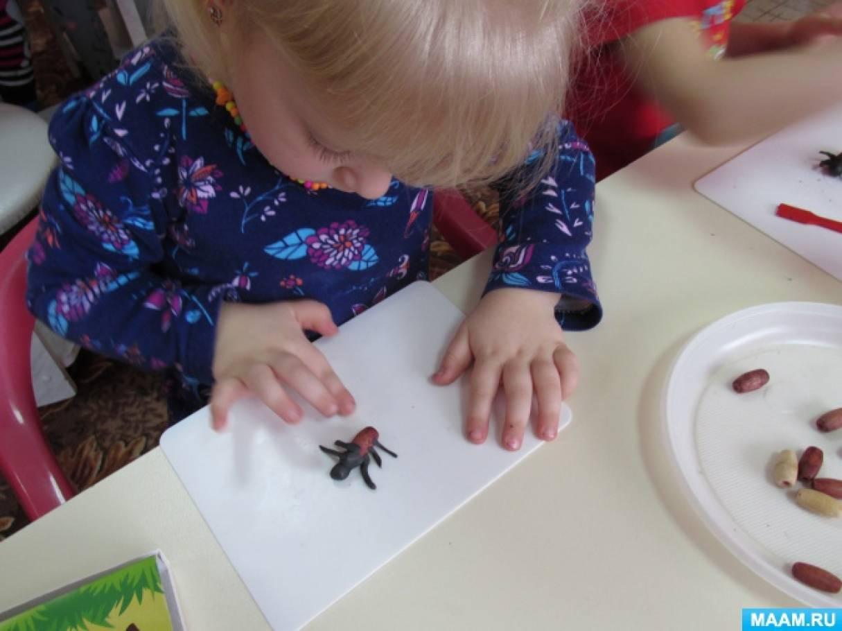 Картинки насекомых лепка в подготовительной группе