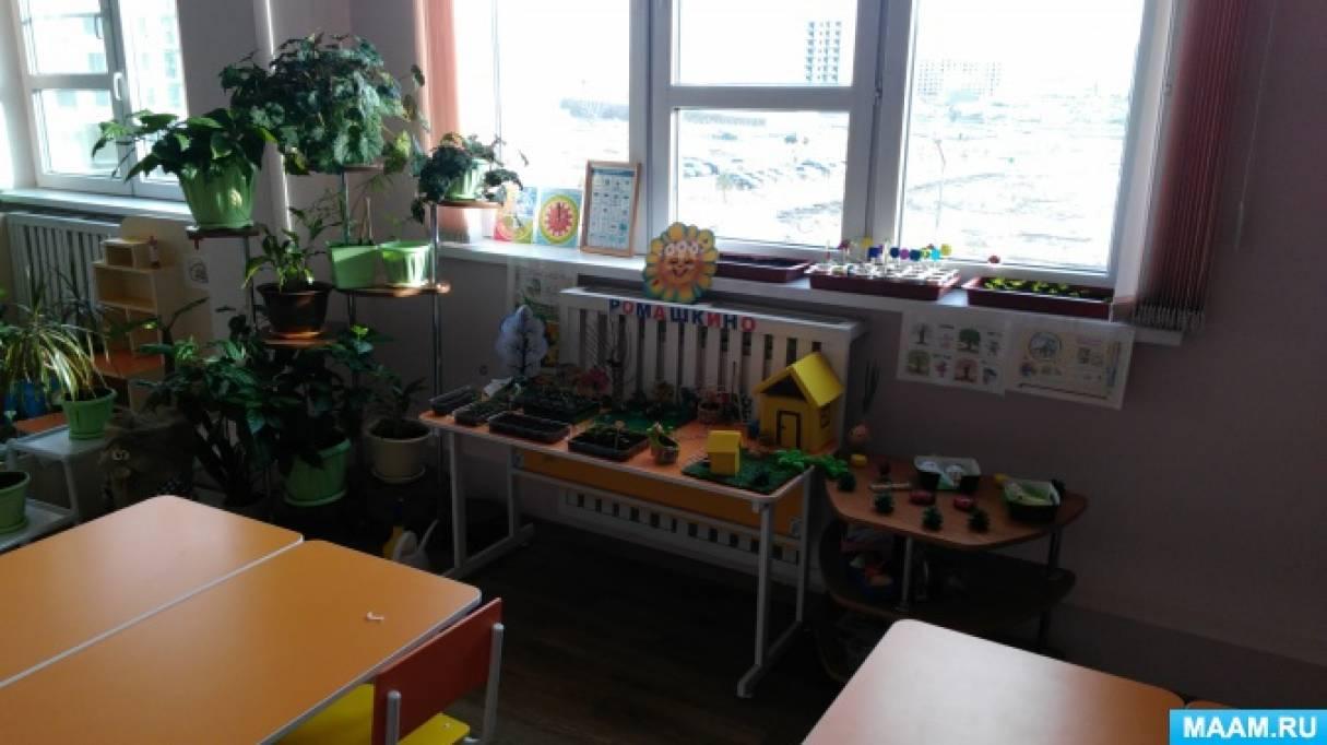 Огород на окне «Ромашкино»