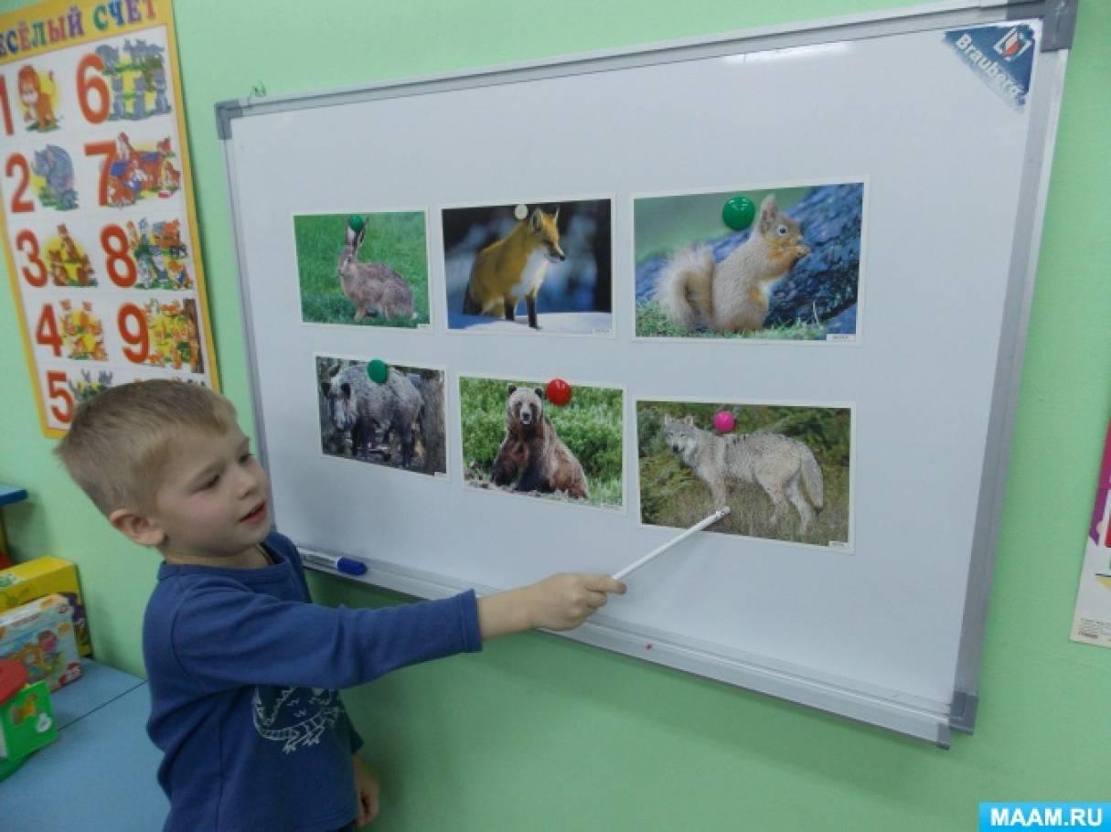 знакомство детей с домашними и дикими животными