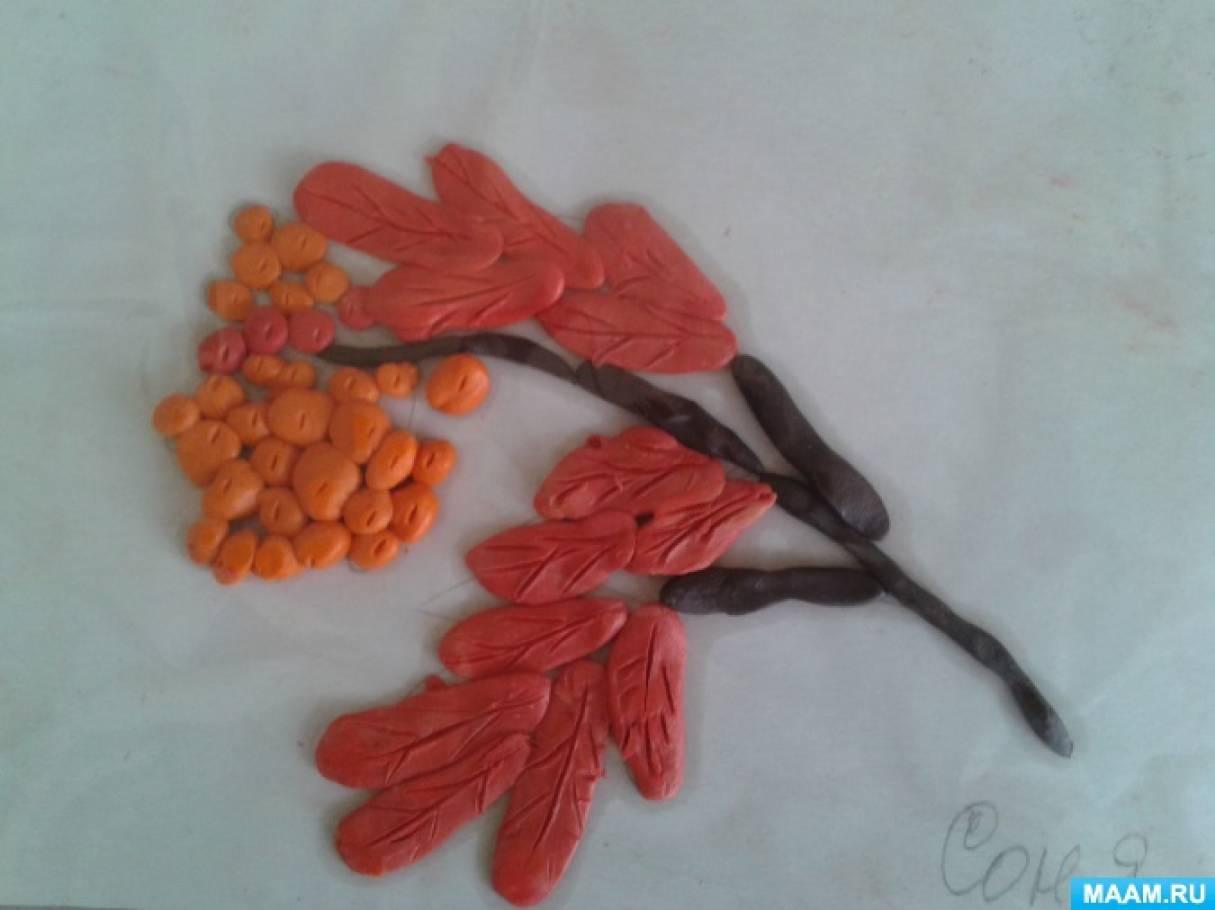 Конспект открытого занятия по художественно-эстетическому развитию. Лепка «Деревья осенью. Ветка рябины»