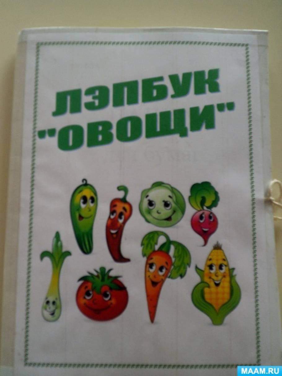 Лэпбук «Овощи» в рамках проекта «Что за чудо-огород!»