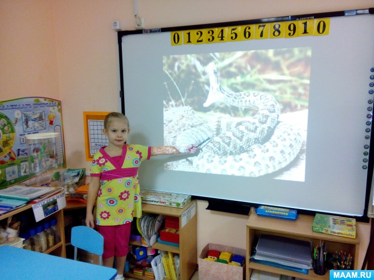 Фотоотчет презентации семейного проекта: «Животные и птицы Америки», подготовительная группа №3 «Рябинка»