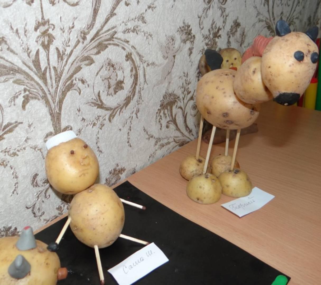 Поделки из овощей и картошки 43