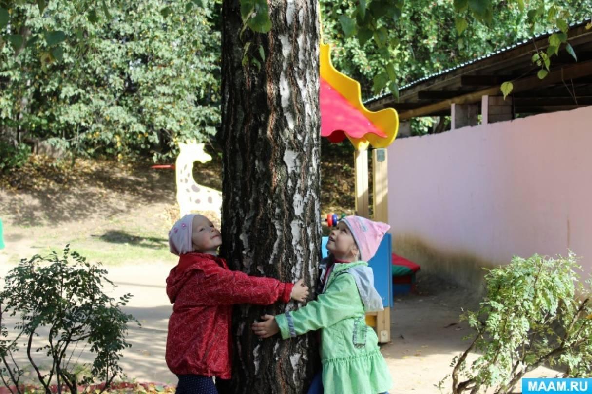 знакомство детей с природой творческий отчет воспитателя