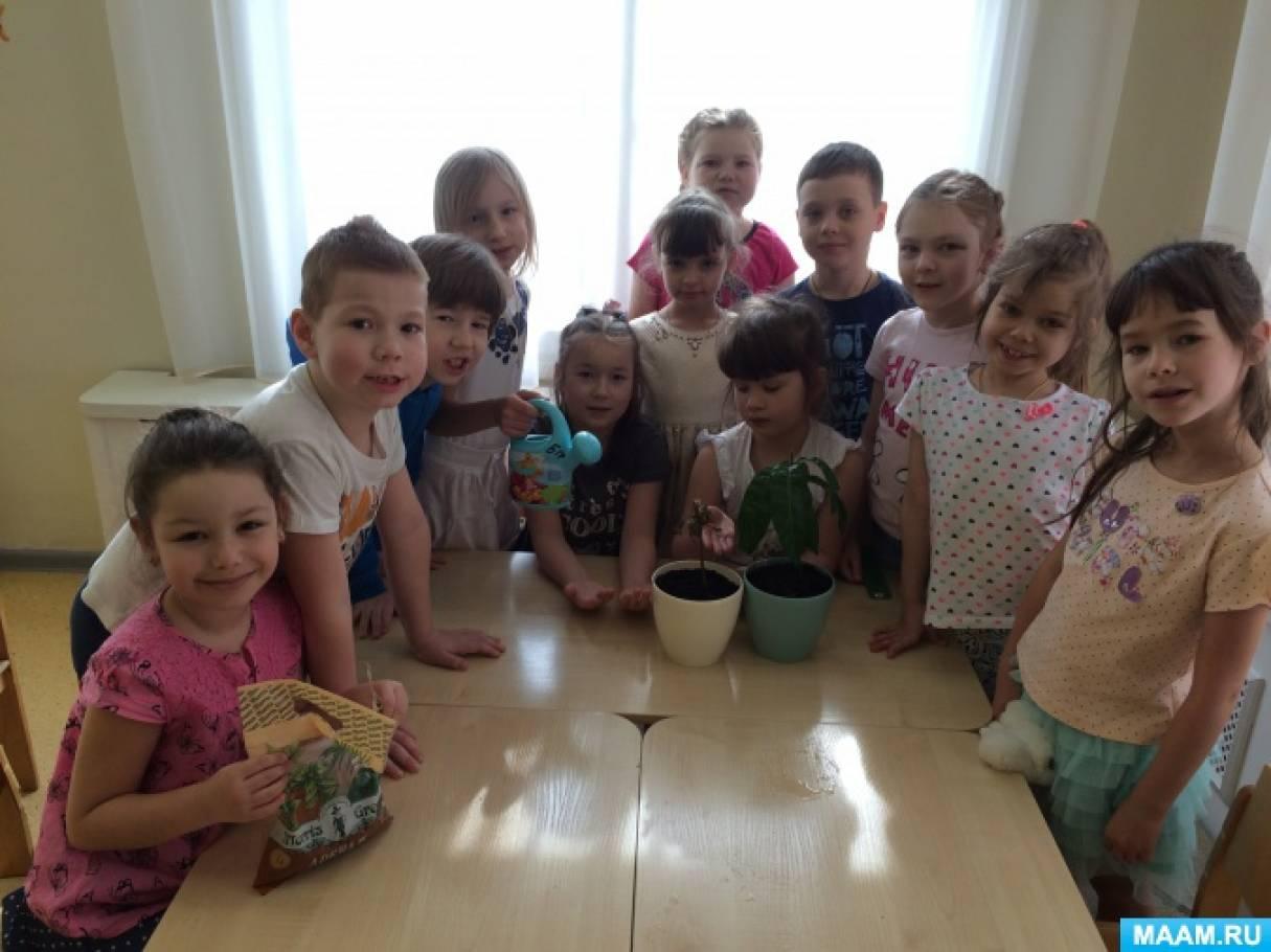 Трудовое и экологическое воспитание дошкольников
