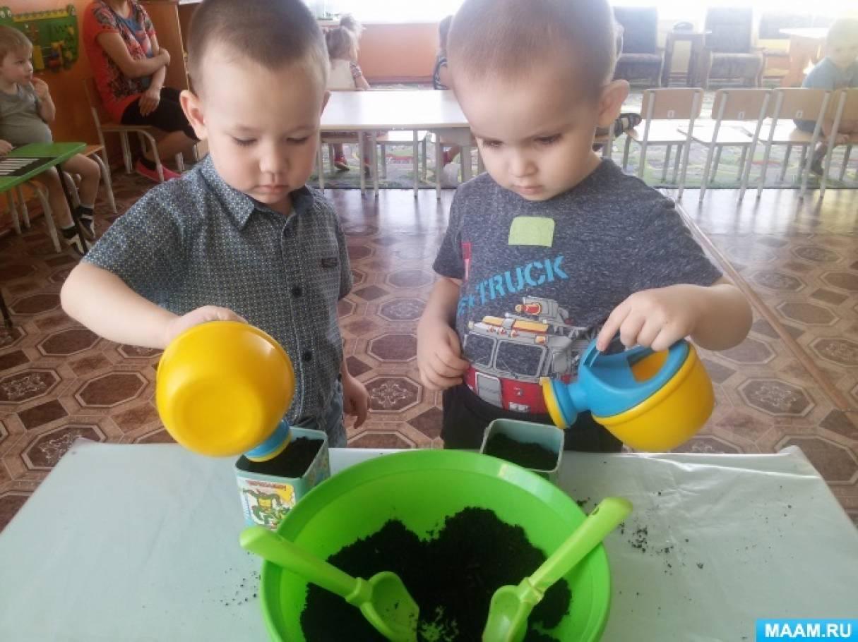Проект для детей первой младшей группы «Лук-лучок»