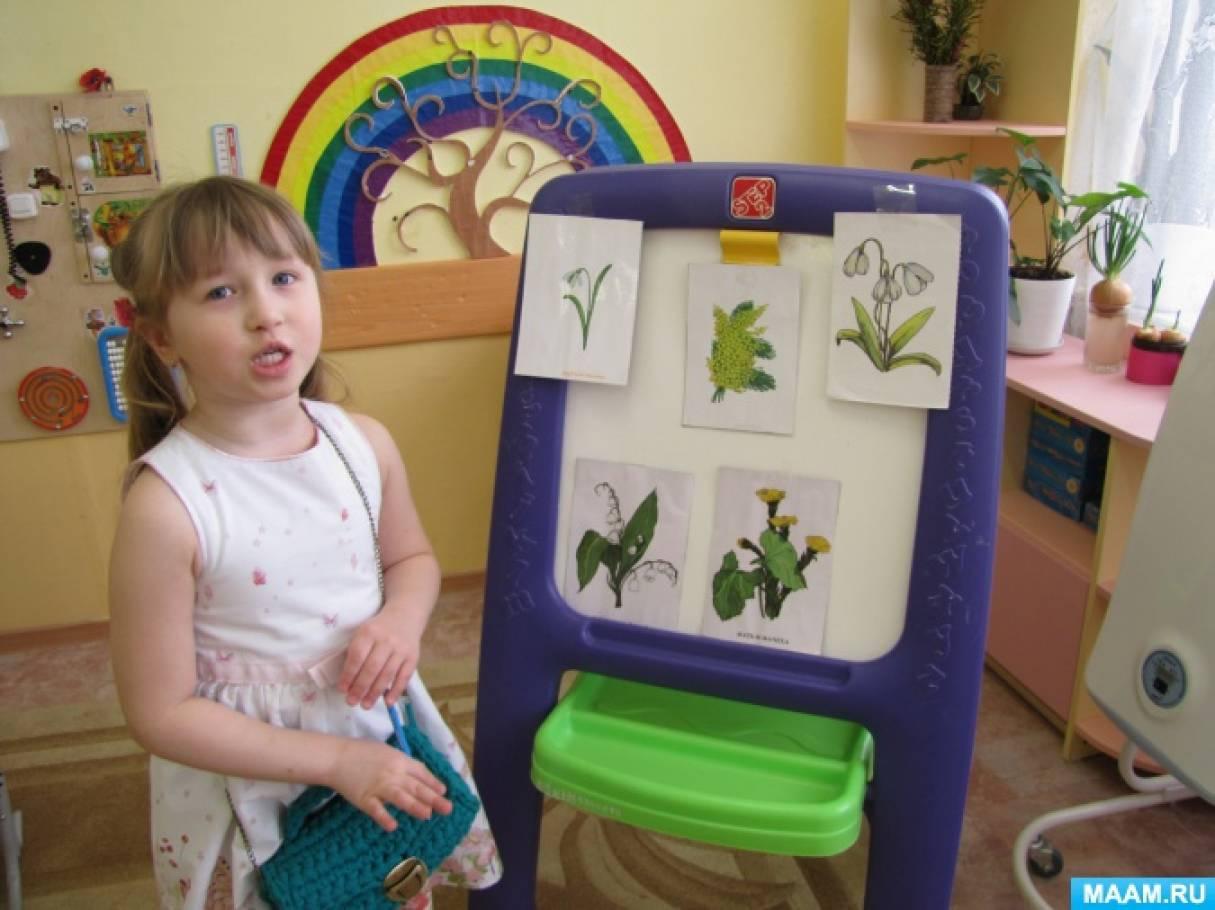 Фотоотчет о НОД «Подснежник» для младшего дошкольного возраста