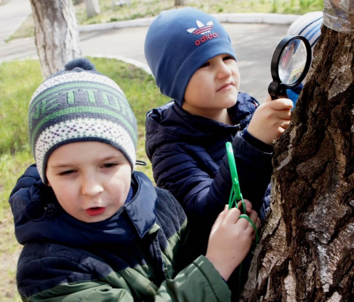 Фоторепортаж с мини-экскурсии «Берёза и сосна весной»