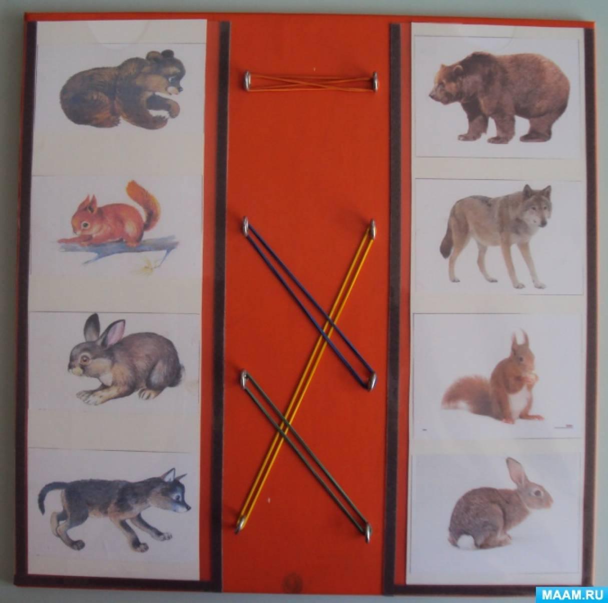 Использование игровой панели «Найди-соедини» по формированию грамматической стороны речи у детей дошкольного возраста с ОВЗ