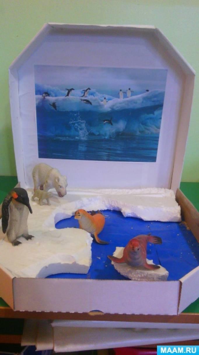 Макеты природных зон для детского сада своими руками 18