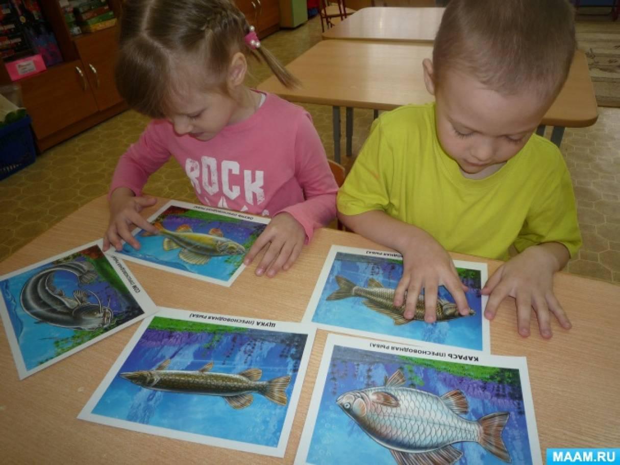 Конспект интегрированного занятия по ФЦКМ для старших дошкольников «Речные, озёрные и аквариумные рыбы»