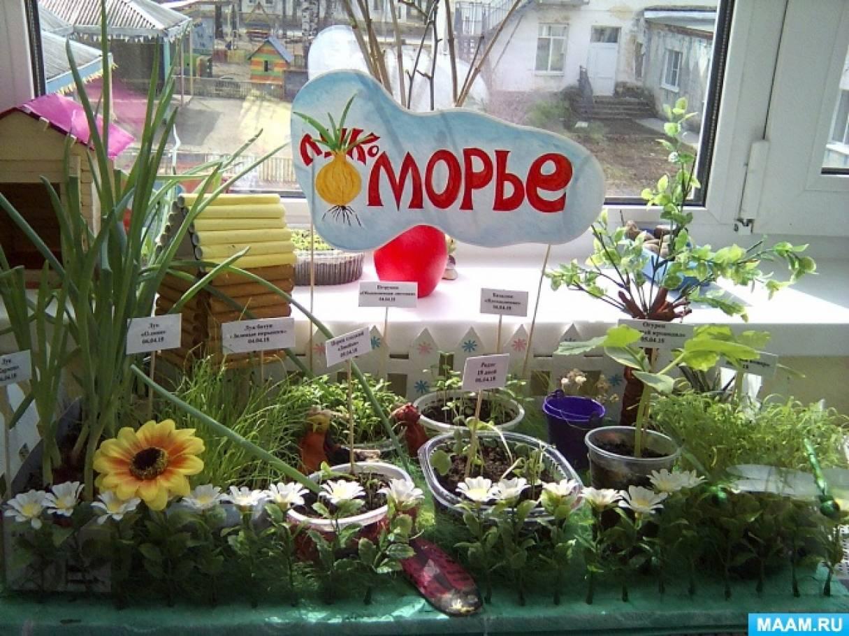 Огород на окне «Лукоморье» для детей дошкольного возраста