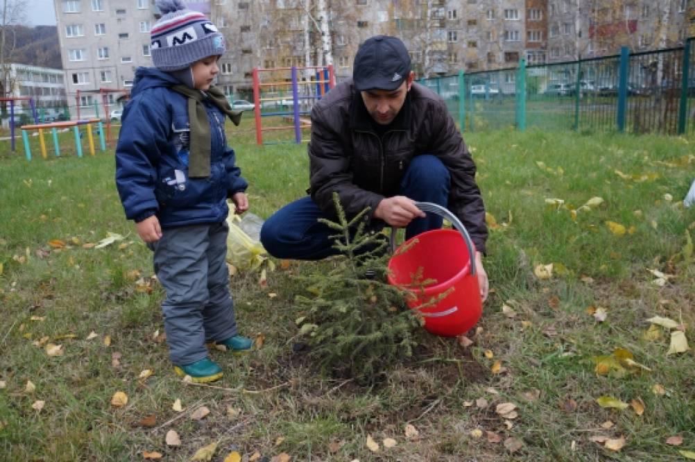Сценарий праздника посадки деревьев