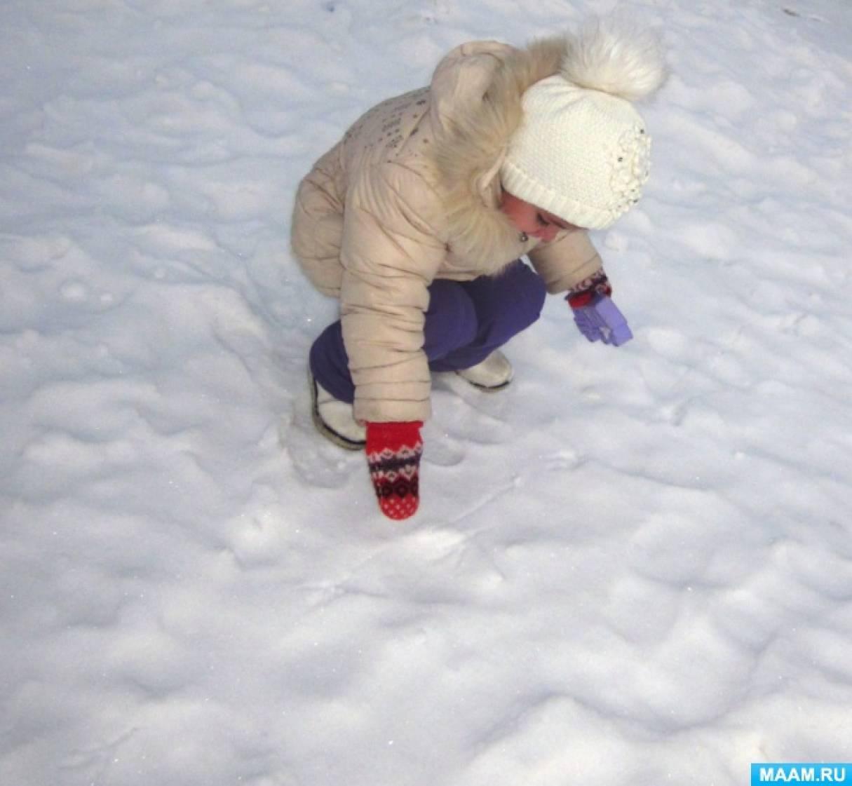 Целевая прогулка в зимний период «Наблюдение за птичьими следами на снегу»