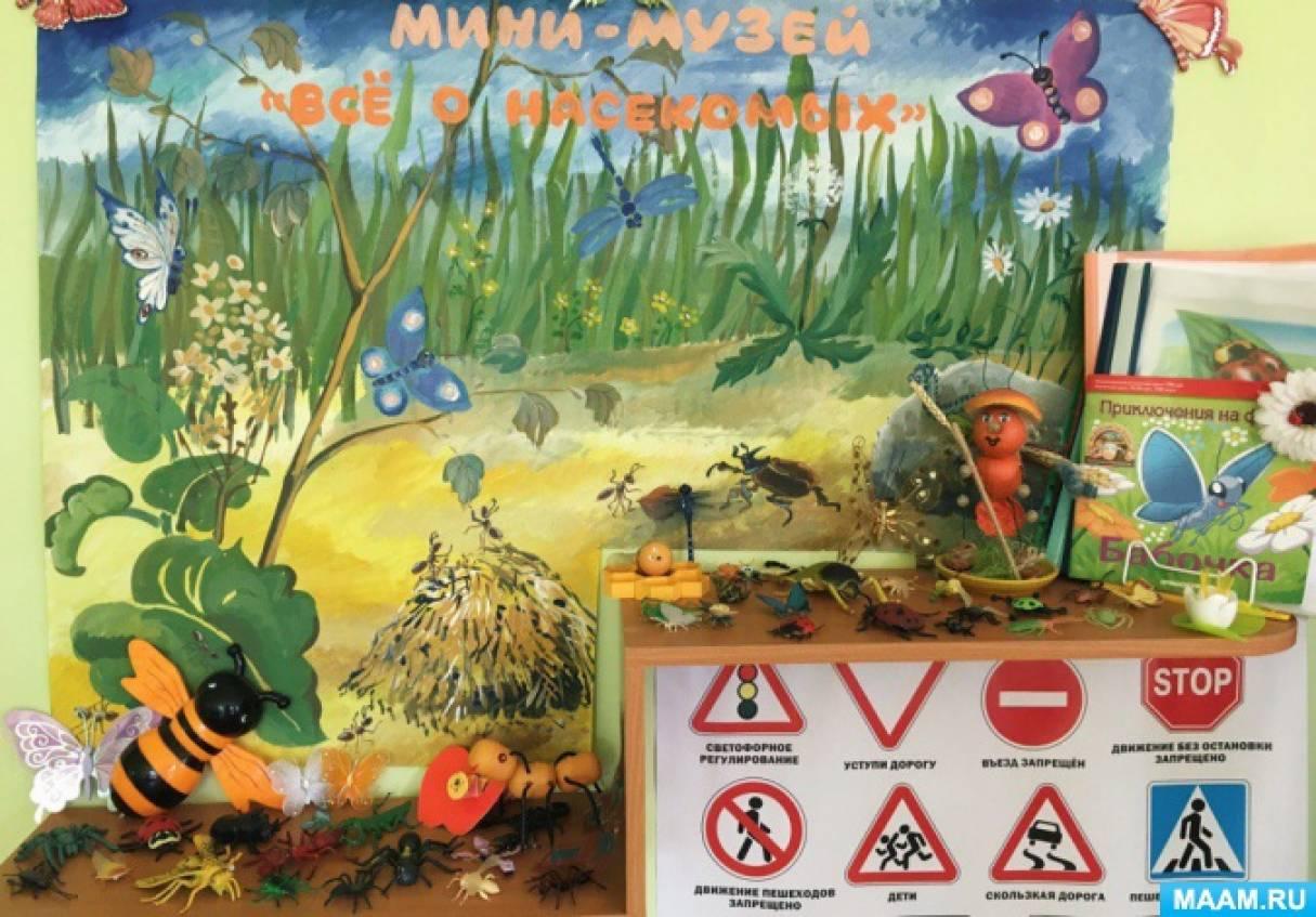 Мини-музей «Все о насекомых»