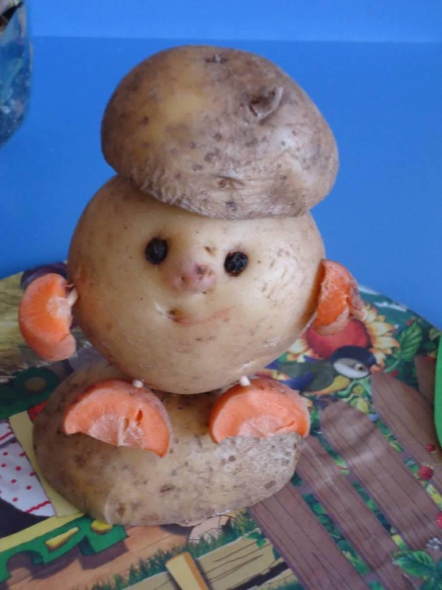 Картинки поделок о картошке