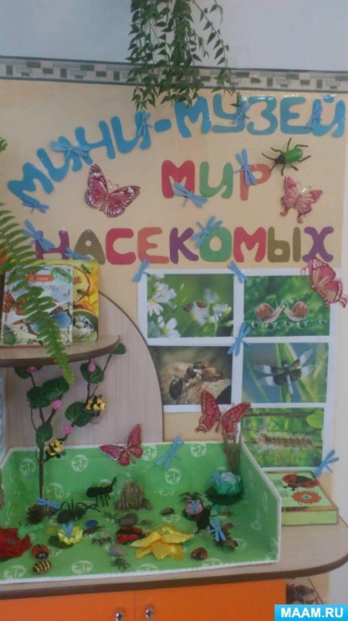 Мини-музей «Мир насекомых»