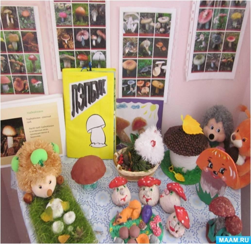 ФГОС дошкольного образования моделирование инновационного  Это созданный в приспособленном помещении Мини музей Грибы как результат изучения темы в группе Вакуленко Е Г