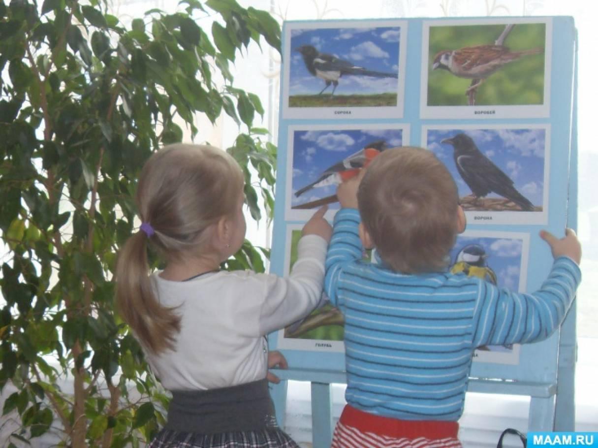 Фотоотчет о проекте «Птички-невелички» (первая младшая группа).