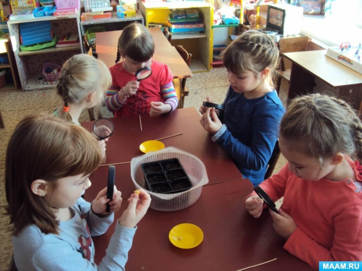 Картинки исследовательская деятельность детей 10