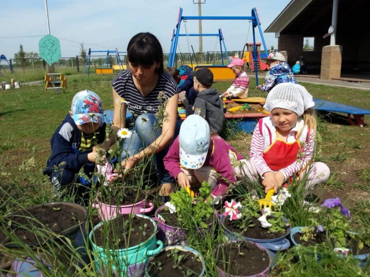 Фотоотчет «Весенне-летняя работа в огороде»