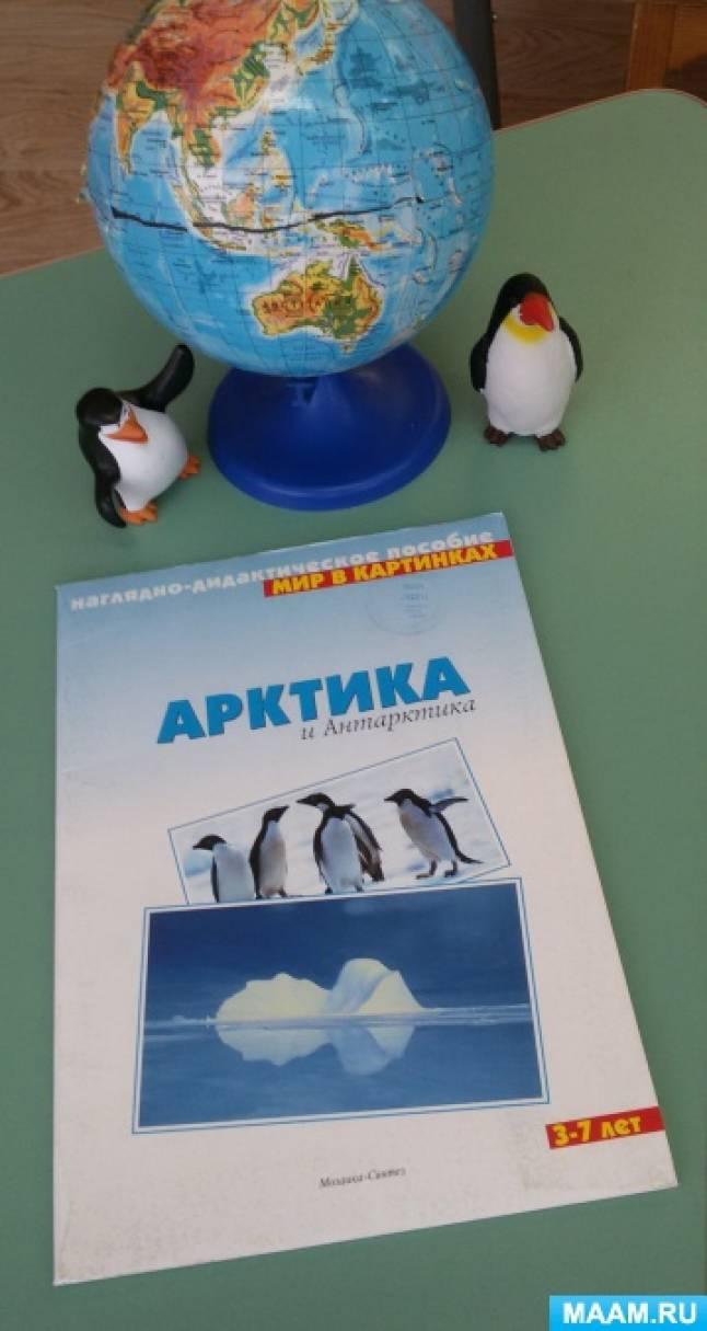 Конспект итоговой НОД по ФЦКМ «Знакомство с пингвином»