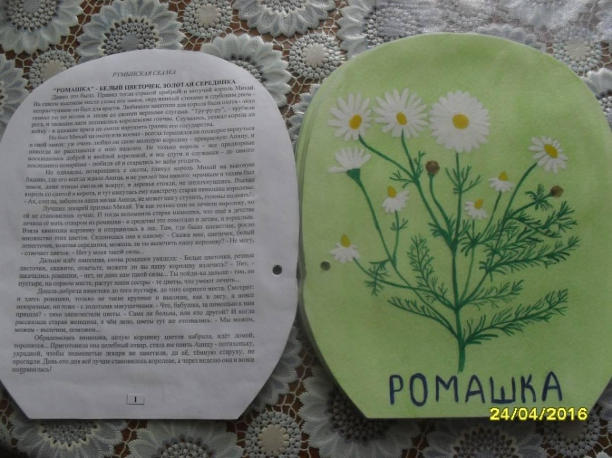 Как сделать книжка малышка берегите растения 3 класс