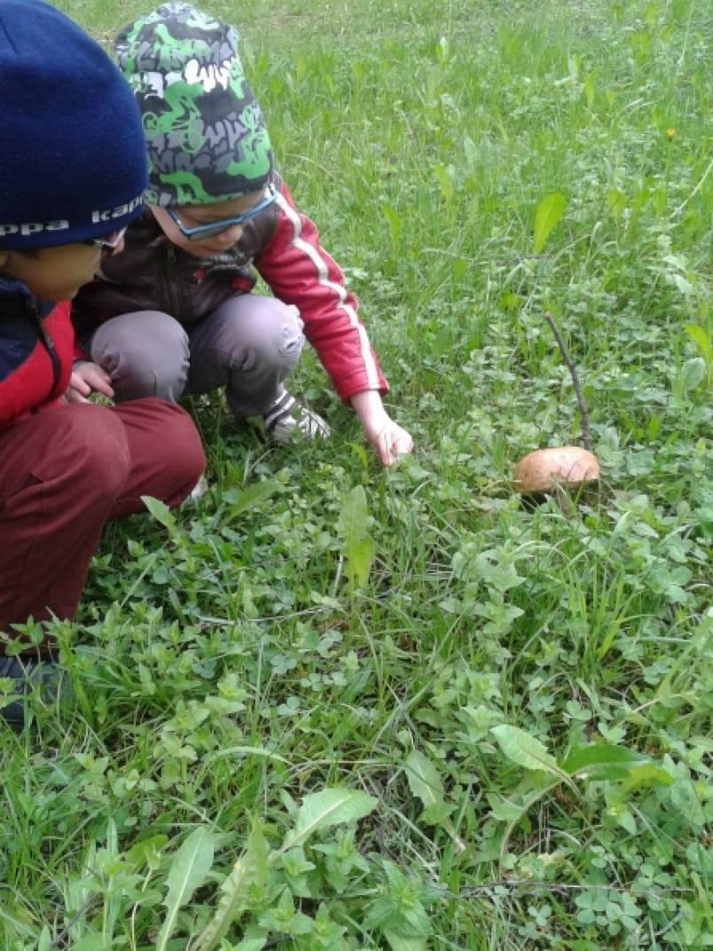 Картинки явления природы в детский сад